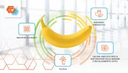 Tecnologia Frigoveneta per la maturazione delle banane preview